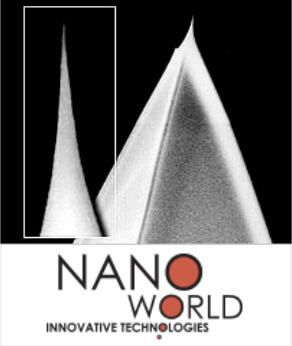 NW-AR10-NCHR
